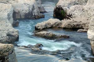 Cascade Gard